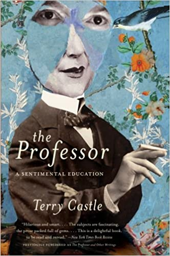 The Professor A Sentimental Education