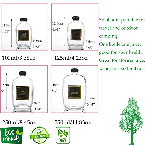 6 Packs Small Juice Mini Glass Liquor Wine Bottles for Beer Milk Beverage Perfume Oil Sauce Whiskey Soda Liquid Storage Honey Drink Containers with Leak Proof Cap (100ML/3.38OZ, Frosted Glass)
