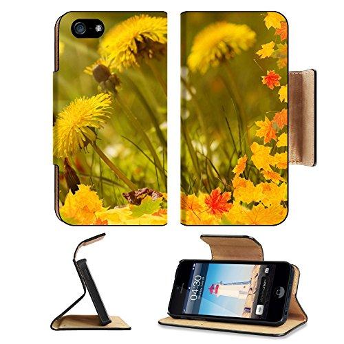 liili-premium-apple-iphone-5-iphone-5s-flip-pu-leather-wallet-case-iphone5-image-id-31922819-autumn-
