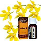Ylang Ylang Oil from Niradhi Herbals : Best Therapeutic Grade Essential Oil-15 ml/0.5 FL OZ