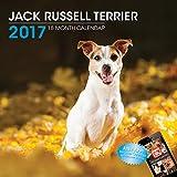 LittleGifts Jack Russell 2017 Calendar (3021)