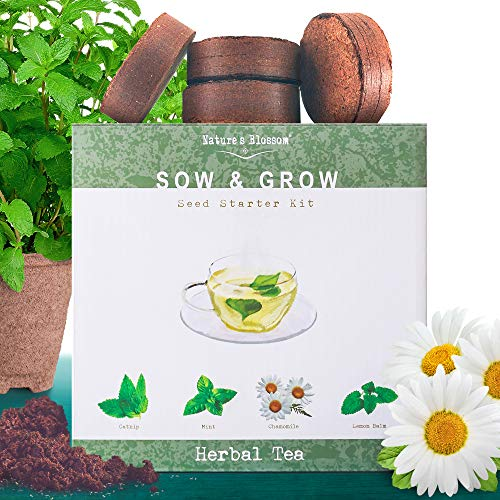 Grow 4 Herbs for Making Herbal Tea - Indoor Garden Seed Starter Kit for Planting Organic Mint Seeds, Catnip Seeds, Lemon Balm and Chamomile. Complete Growing Set for Beginners and Expert Gardeners ()