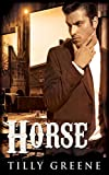 Horse (The Bloody Bucket Book 1)