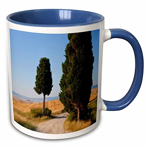 3drose-danita-delimont-italy-winding-road-val-d-orica-tuscany-italy-11oz-two-tone-blue-mug-mug-22767