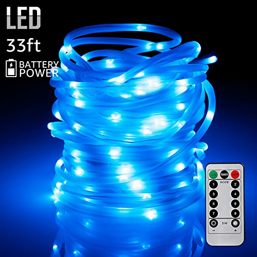 Torchstar 33ft 100leds fairy string lights with remote control torchstar 33ft 100leds fairy string lights aloadofball Gallery