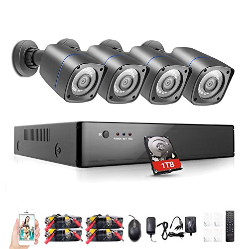 (Rraycom 8CH Security Camera System HD-TVI 1080P DVR Recorder with 4X HD 2000TVL 720P Indoor/Outdoor Weatherproof Cameras 1TB Hard Drive,115ft Night Vision,Motion Alert,Smartphone and PC Remote Access)
