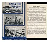 img - for Palestine: Problem and Promise book / textbook / text book
