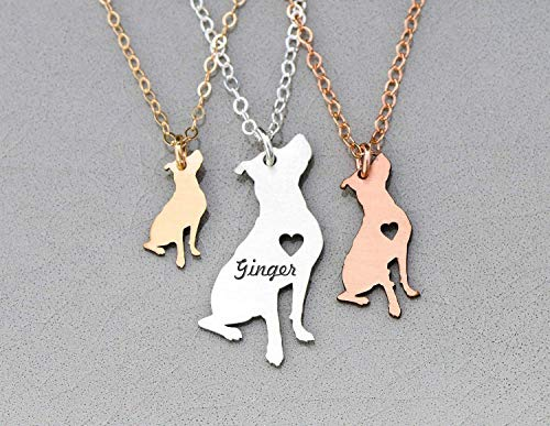 Pitbull Rescue Necklace - IBD - Personalize Name Date - Pendant Size Options - 935 Sterling Silver 14K Rose Gold Filled Charm ()