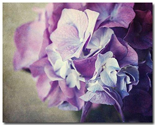 Hydrangea Violet - 8