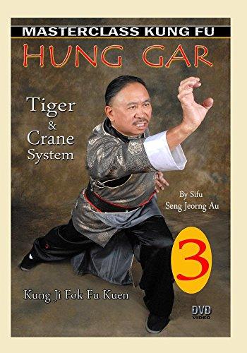 Kung Fu Hung Gar 3