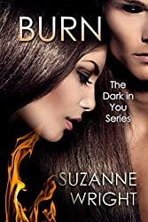 BURN (The Dark in You Series Book 1) (English Edition)