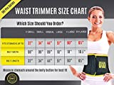 TNT Pro Series Waist Trimmer Weight Loss Ab Belt - Premium Stomach Wrap and Waist Trainer