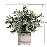 MIAIU Small Potted Artificial Plants Plastic Fake