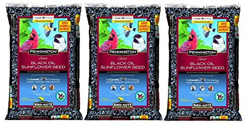 Pennington Select Black Oil Sunflower Seed Wild Bird Feed, 40 lbs (Pack of 3)