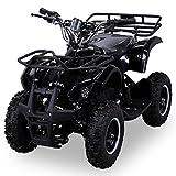 NEU Elektro Kinder Miniquad TORINO 800 Watt ATV Pocket Quad Kinderquad Kinderfahrzeug schwarz