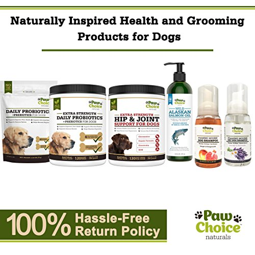 Probiotics for Dogs by using 6 Digestive Probiotics