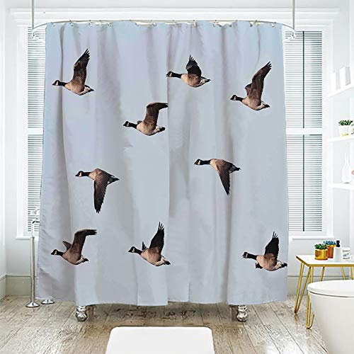 scocici Bath Curtain Suit Bathroom Waterproof Curtain Bath Curtain,Geese Decor,Canada Goose (Branta Canadensis) in Flight Clear Sky Traveling Feather Picture,70.8