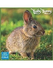 Baby Bunny 2022 Calendar: Official Rabbit Calendar 2022, 16 Month Square Calendar