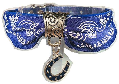 Size Small Blue Bandana Dog Collar with horseshoe Charm