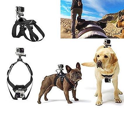 Paleo La cámara del perro monta guarniciones del pecho-espalda para el héroe gopro 4