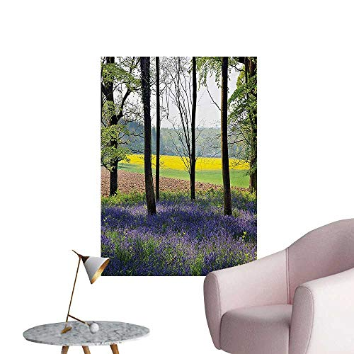 ParadiseDecor Woodland Art Stickers Bluebells in Wepham Woods Wildflower Spring Rural Environment Photo PrintPurple Yellow Green W20 xL28 Cool Poster ()
