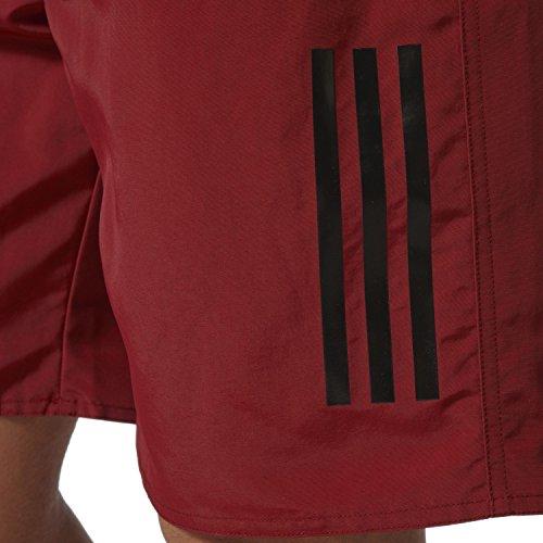 adidas 3S SH CL Maillot de bain, Unisex, Rouge (Buruni / Noir), 2XL