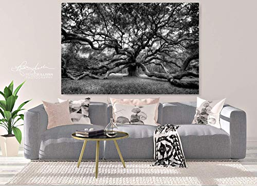 Angel Oak/Charleston SC/CANVAS or METAL/Ready-to-Hang/Black & White Fine Art Photography/Live Oak Tree/Small to Extra Large Wall Art, 7x5 to 72x48 inches