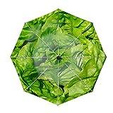Travel Umbrella, Windproof Folding Umbrella, Auto Open Close and Ergonomic Handle (Lettuce Leaves Vegetable)