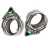 HQLA 1 Pair Popular Sea-shell Stainless-steel Ear Plugs Tunnels Gauges Stretcher Piercings Jewelry 0g-5/8(8mm-16mm) (1/2''(12mm))