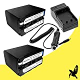 Two Halcyon 7200 mAH Lithium Ion Replacement Battery and Charger Kit for Sony DSR-PD170 3 CCD MiniDV Digital Camcorder and Sony NP-F970