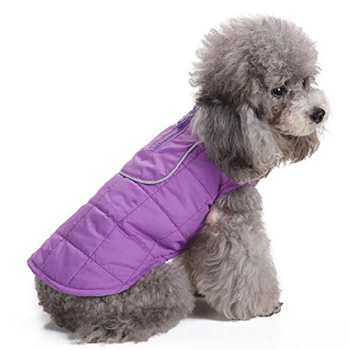 Pet Dog Coat Puppy Warm Jacket Spring Hoodie Thick Systond Clothes Apparel jumper with D-Ring for Small Medium Large Dogs (D-ring Dog Raincoat)