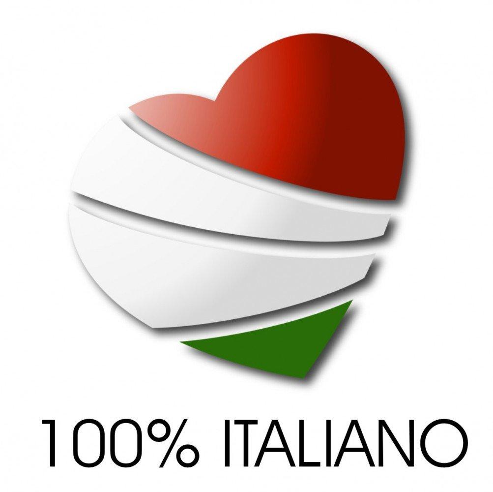 Michelini Ferro da Stiro con Caldaia in Rame Garanzia 5 Anni Prestige Classic A-5XC