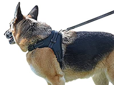 Our Legendary Dog Harness Across USA - Leash Included - MyPetsAmerica Reflective, Adjustable Harness With Handle - No-Choke, No-Slip - for Training, Walking, Hiking - Premium Quality - No-Pull Effect