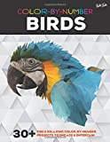 Color By Number: Birds: 30+ fun & relaxing color-by-number projects to engage & entertain