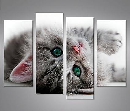 Quadro moderno gatito del gato con los ojos verdes impresión ...