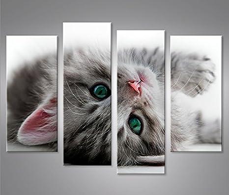 ... gato con los ojos verdes impresión sobre lienzo - Quadro X sillones salón cocina muebles oficina casa - Fotográfica Tamaño XXL cuadros: Amazon.es: Hogar