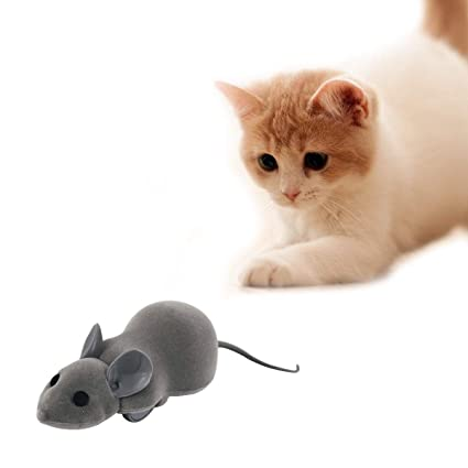 OSPet Cat Interactive Chase Toy - Contorl by App for Apple Or Android - EN  Svhc & RoHS Certified Pet Trainning Toy