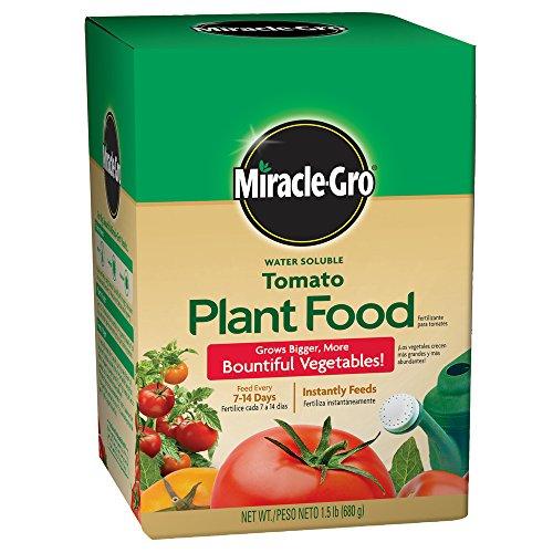 Miracle-Gro 2000422 Tomato Plant Food Tomato Fertilizer (6 Pack), 1.5 lb - Miracle Gro Tomato Food