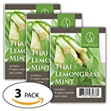 Thai Lemongrass Mint-Everydaycollection Wax 3 packs - ScentSationals Scented Wax Cubes for Warmers