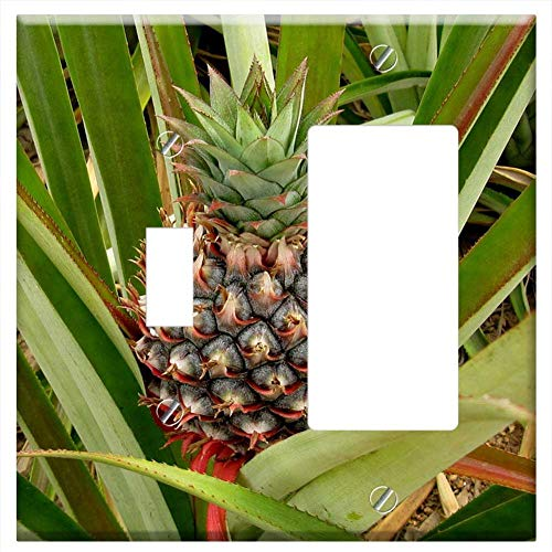 1-Toggle 1-Rocker/GFCI Combination Wall Plate Cover - Pineapple Growing Plant Food Nature Tropical ()