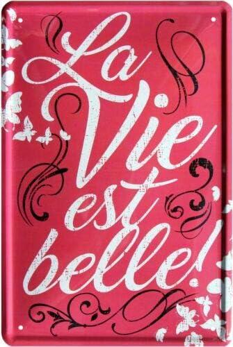Blechladen Cartel de Chapa La Vie EST Belle 20 x 30 cm 1703: Amazon.es: Juguetes y juegos