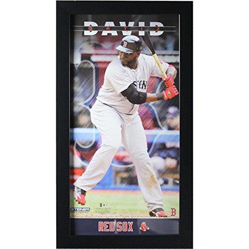 MLB Boston Red Sox David Ortiz 10x20 Player Profile Wall Art (David Ortiz Poster)