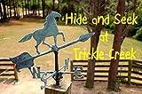 Hide and Seek at Trickle Creek offers