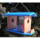 DutchCrafters Amish Made Hanging Bluebird Mealworm Feeder; Bluebird Hanging Feeder with Removable Sides (Blue & Bright…