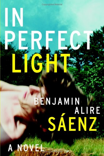 In Perfect Light: A Novel