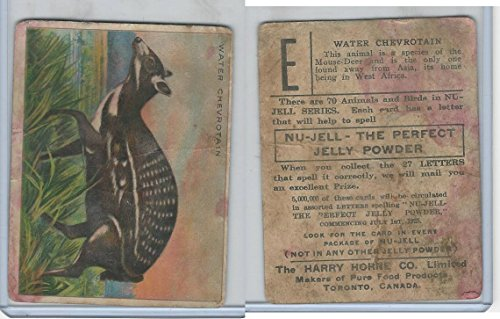 FC1, Harry Horne Co, Nu-Jell, Animals And Birds, 1925, Water Chevrotain