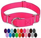 Country Brook Design | 1 Inch Martingale Heavyduty Nylon Dog Collar - Hot Pink - Medium