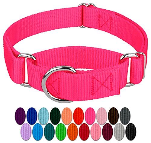 Country Brook Design 1 Inch Martingale Heavyduty Nylon Dog Collar - Hot Pink - Medium -