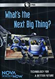What's the Next Big Thing (Nova Science Now) Picture