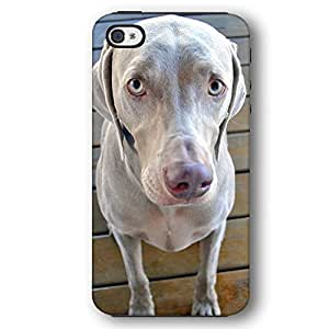 Weimaraner Dog Puppy iPhone 4 and iPhone 4S Armor Phone Case by lolosakes